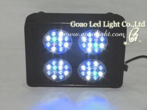 China Led Aquarium Light P4 120W dimmable on sale