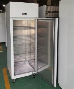 China Custom Stainless Steel Industrial Upright Freezer With Auto Defrost Design on sale