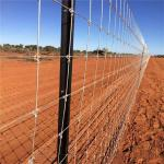 Anti Corrosion 200m Galvanized Fixed Knot Deer Fence