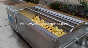 China Brush Roller Type Potato Washing Peeling Machine on sale