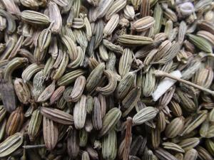 China Fennel Seeds for sale on sale