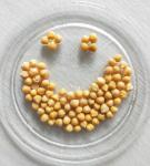 China Cheap Price Canned Chickpeas Wholesale Preserved Chick Peas 400g wholesale
