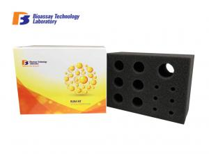 China 96 Wells Rat Kidney Injury Molecule 1 ELISA Kit With High Sensitivity and Specificity on sale