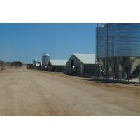 China Commercial Automatic Poultry Farm Shed with Equipment for Broilers on sale