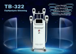 China 4 Handles Cryolipolysis Fat Freezing Machine For Body Face Weight Loss Machine on sale
