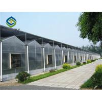 China 1.2 G/m3 Mult Span Polycarbonate Sheet Greenhouse on sale