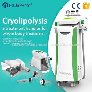 China Cool sculption weight loss Fat Freezing Cryolipolysis slimming machine on sale