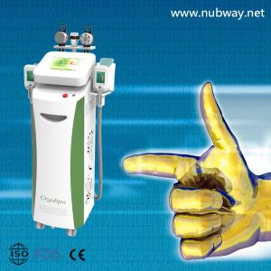 China Super fast amazing result cryolipolysis body shape equipment to lose weight on sale
