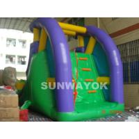 Custom 0.55 mm PVC / plato TM Inflatable Water Slide With Climber for aqua park