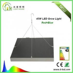 China Energy Saving Waterproof LED Plant Grow Lights / Hydroponic LED Grow Lights 3W - 120W on sale