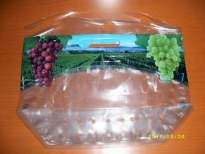 China new style anticorrosion grape bag,cherry bag,fruit bag on sale