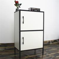 China Two Doors Two-Tone Fast Assemble Steel Storage Cabinet For Living Room Using on sale