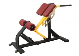 China Pro Commercial Gym Rack And Fitness Equipment Roman Ab Exercise Chair on sale