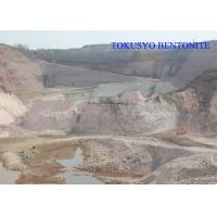 Heat Resistance Sodium Bentonite , Casting and Foundry Bentonite Powder