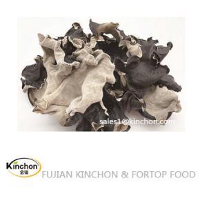 China Dried black fungus mushroom Whole Dried Wood Ear Mushroom on sale