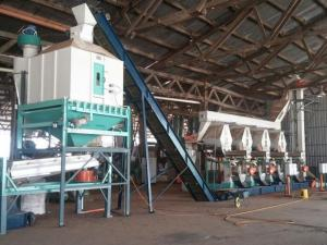 China 4 t/h Rice Husk Pellet Production Line Advantages of Rice Husk Pellets on sale