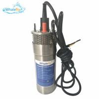 China Whaleflo 12LPM Submersible Deep Well Solar Powered Bore Water Pumps Factory Direct on sale