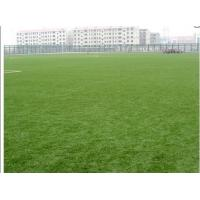 China Synthetic Soccer Field Grass on sale