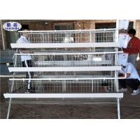 4 Tiers Chicken Layer Cage 4 Cells 128 Birds For Zambia Less Waste Water