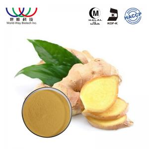 China Ginger Root Pure Plant Extract Food Grade Powder With Gingerols 5% - 20% on sale