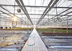 China 3 - 5m Gutter Height Hydroponic Greenhouse Great Heat Retaining Property on sale
