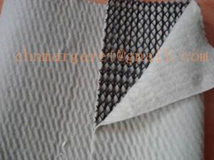 China geonet for slope protection on sale