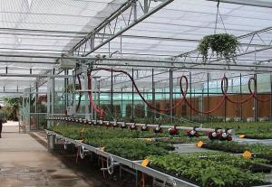China Customized Greenhouse Drip Irrigation System Manually Or Automatically Operated on sale