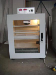 China Small Incubator(ELEY-3) on sale