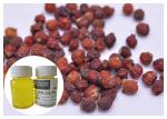 China rosehip fruit Natural Plant Extract Oil scar removel CAS 84603 93 0 wholesale