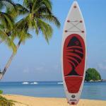 板、膨脹可能な波板、一口のかい板、かい波を少し食べて下さい、立てて下さいかいboard11'6を」