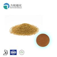 China 10% - 90% Pure Plant Extract / Plant Protein Powder Sesamum Indicum White Powder on sale
