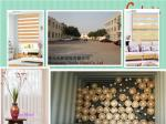 China fashion day night zebra roller blind wholesale