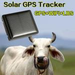 Mini Solar Animal Gps Tracker Gps Tracking Device Long Battery Life Sim Card