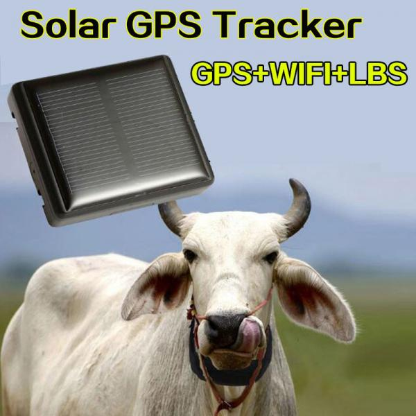 Mini Solar Animal Gps Tracker Gps Tracking Device Long