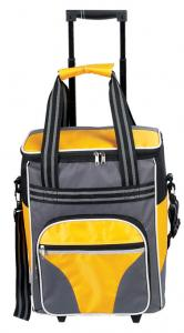 China Fashion Picnic trolley Bag,Trolley cooler bag,Rolling cooler bag, Insulated Luggage Bag on sale