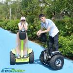 China Powerful Electric Chariot Scooter 2 Wheel Lithium Battery For Adult wholesale