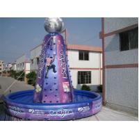 Violet Giant Inflatable Sports Games Amusement Park Equipment Violet