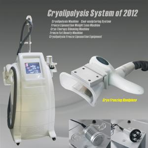 China Cool Sculpting Zeltiq Cryolipolysis Machine For Home Use / Salon Beauty on sale