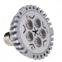 LED PAR Light (VS-PAR30A-5C1)