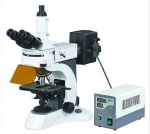 China Excellent Upright Fluorescent Microscope with High Resolution Fluorescent Objectives on sale