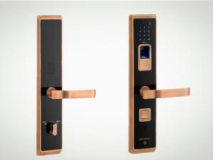 China Delux high-end biometric touch screen digital smart fingerprint villa lock on sale