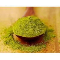 Pure Matcha Green Tea Powder Powdered Herbal Extracts For Strengthen Immunity