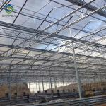 Multi Span PC Sheet Greenhouse Polycarbonate Covering Plant Growth