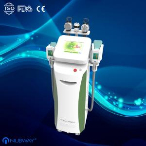 China Big promotion in Sep!!! Multi-function cryolipolysis weight loss machine for clinic on sale