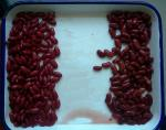 China Custom Size Canning Fresh Vegetables Premium Dark British Red Kidney Beans wholesale