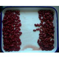 China Custom Size Canning Fresh Vegetables Premium Dark British Red Kidney Beans on sale