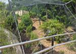 Wear Resisting Stainless Steel Cable Trellis Mesh For Green Wall Foundation