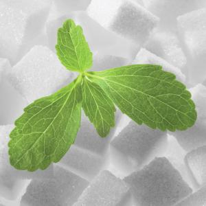 China natural stevia rebaudiana extract powder without additives stevia sweetener on sale