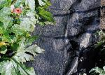 Black Garden Plant Accessories - Tear Proof Weed Block Fabric / Weed Control Fabric