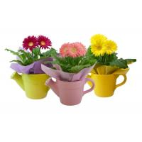 China Solid Color Glazed Ceramic Planters Can Shaped Flower Pot For Indoor / Outdoor on sale